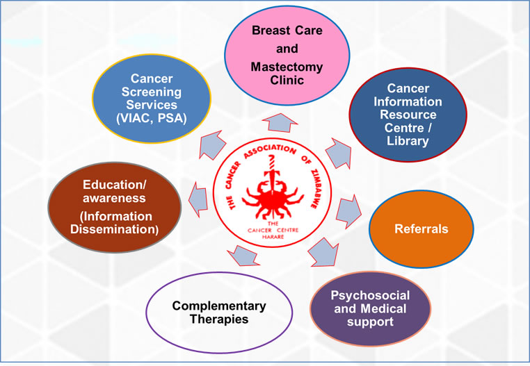 Harare Cancer Society Service Structure