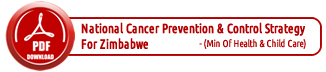 National Cancer Prevention and Control Strategy Doc